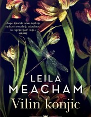 Meacham, L. - Vilin konjic